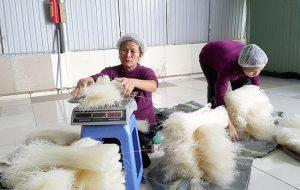 kinh doanh mì gạo