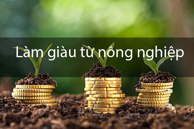làm giàu từ nông nghiệp